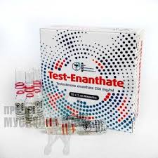 testosterone enanthate 250mg 10 ampoules